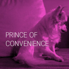 Rek30211 indie prince of convenience