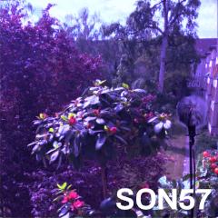Son57
