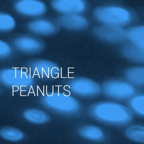 Rek36920 triangle peanuts electronic